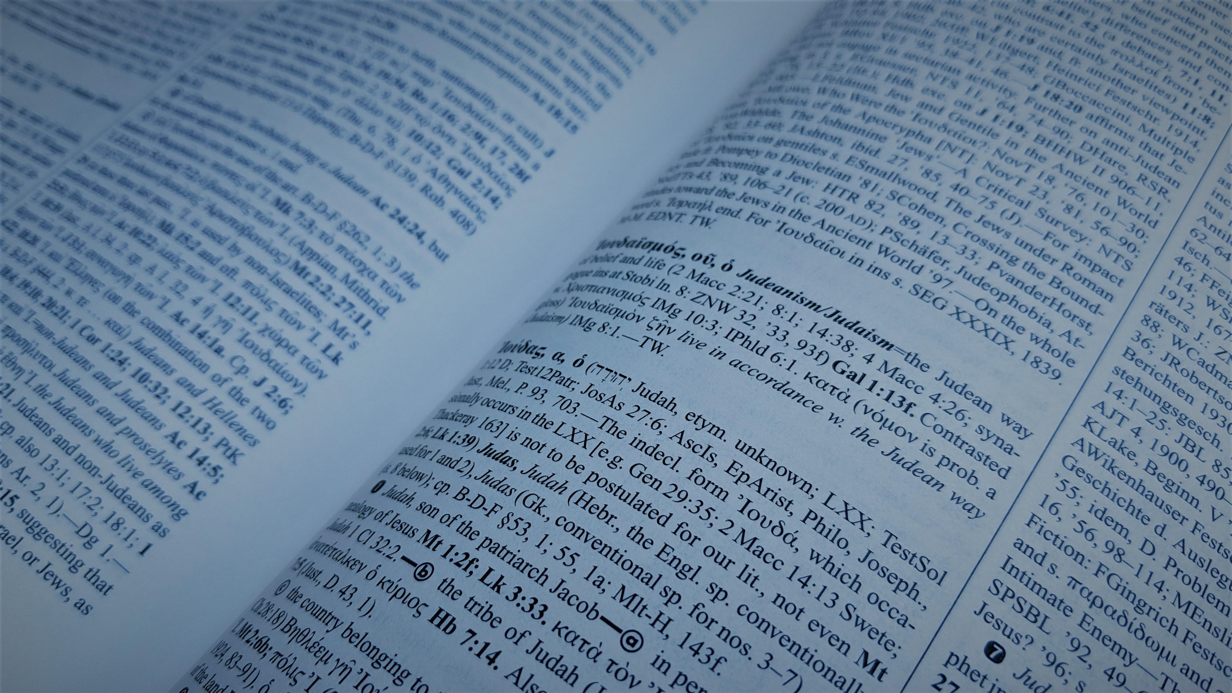 Danker's NT Lexicon